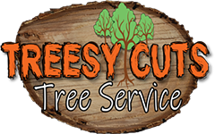 Bainbridge Georgia Tree Service