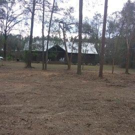 After - Tree & Debris Removal & Yard Clean in Bainbridge GA
