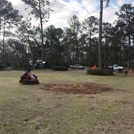After - Root Ball Removal in Bainbridge GA